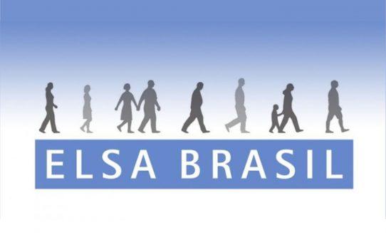 elsa brasil 2